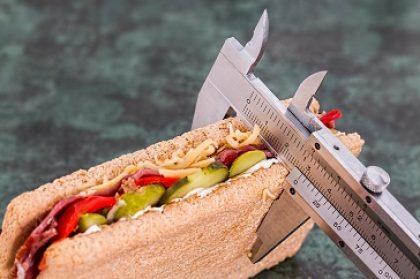 לימודי תזונה